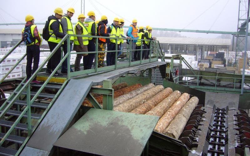 Exkurze pily Mayr-Melnhov Holz a Biocelu v Paskově